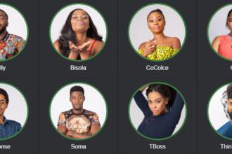 BB Naija housemates 2017