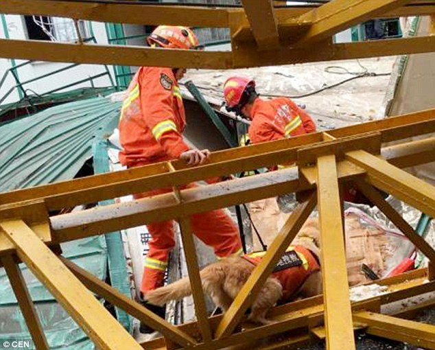 Crane collapse in China's southern district
